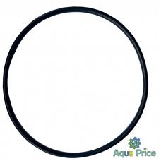 Уплотнительное кольцо на колбу SL25, SL05, SL25 LUX 17467 Bio+ Systems