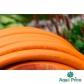 Шланг садовый Tecnotubi Orange Professional для полива диаметр 5/8 дюйма, длина 25 м (OR 5/8 25)