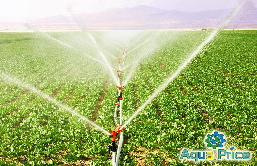 Дощувачі і зрошувачі поливають поле